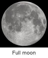 Moon Phase Calendar 2016